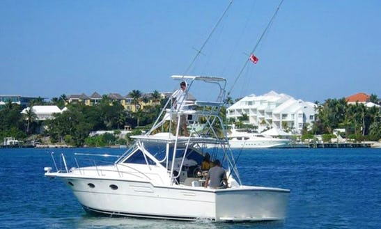 Enjoy 36 Ft Tiara Yacht