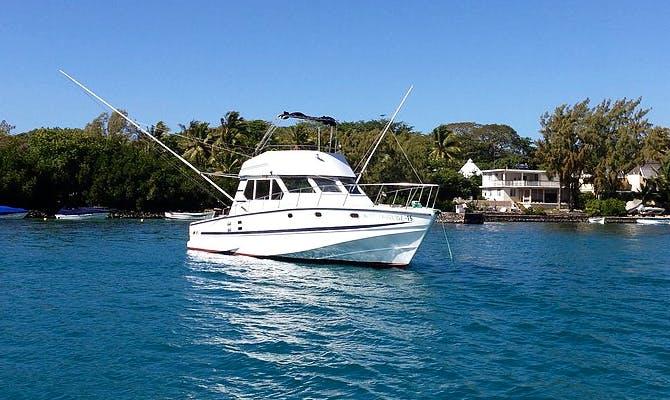 Enjoy Fishing in Trou d'Eau Douce, Mauritius on 46' Sport Fisherman
