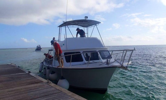 Snorkeling Excursion Boat In East End