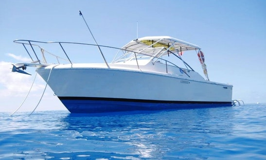 33' Passenger Boat Diving Charter In George Town, Cayman Islands