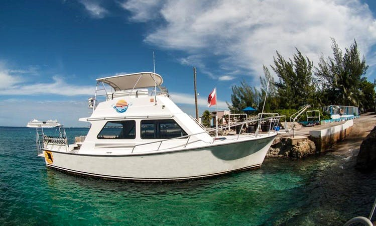 Diving Charter in George Town