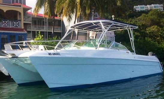 Charter A Power Catamaran In Leonards, British Virgin Islands