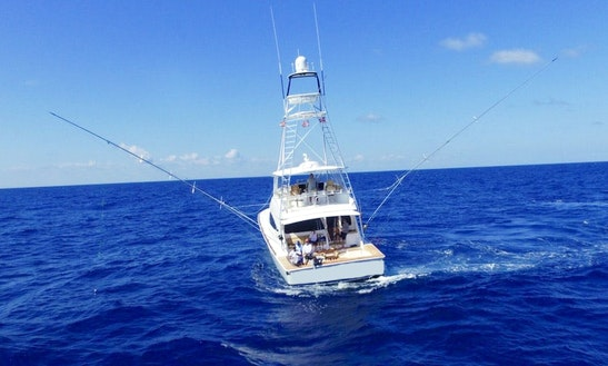 Enjoy Fishing In La Romana, Dominican Republic On Viking 72 Sport Fisherman
