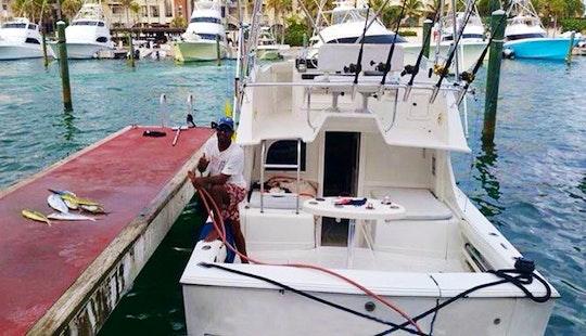 29' Blackfin Offshore Sportfishing Charter In Punta Cana
