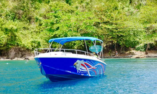 Charter A Center Console In Gros Islet, Saint Lucia For Up To 10 People