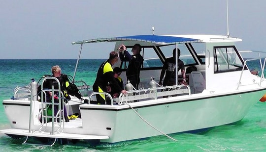 27' Dive Charter In Saint Georges