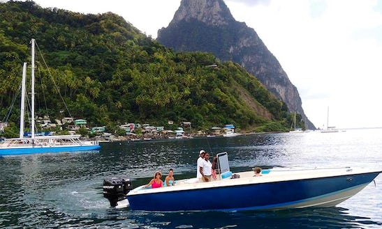 Eco Charters, Tours,  Private Diving, In Soufrière, St.lucia
