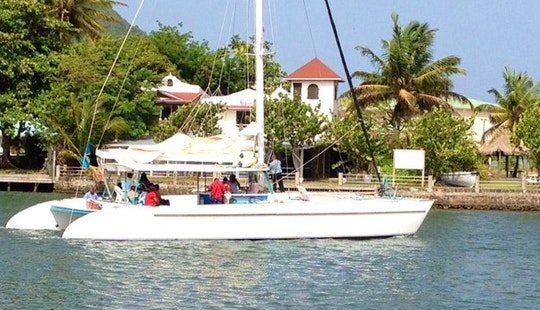 Day Sailing Tour In St. Lucia