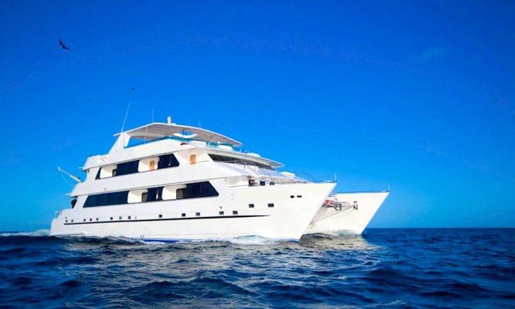 "Luxury Cruise on ""Cormorant"" in the Galapagos"
