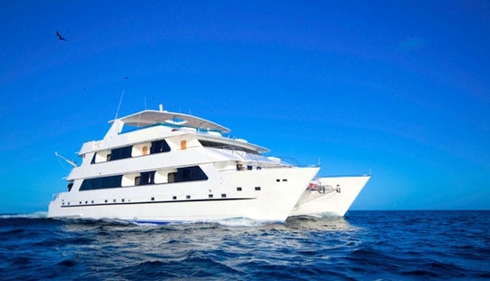 Luxury Cruise On