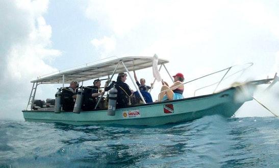 23' Dive Boat In Panama