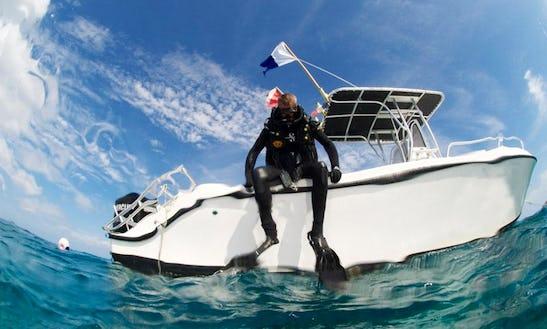Arvor 25' Center Console Private Dive Charters In Saint Martin