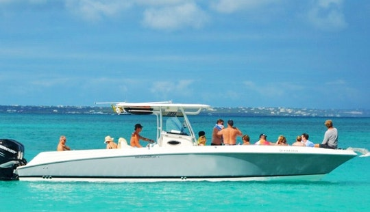 Island Tour By Boat In Saint Maarten