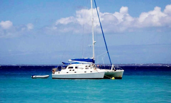 'celine' Sailing Catamaran Trips In Simpson Bay