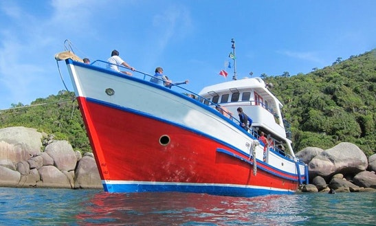 Exciting Boat Diving Tour In Florianópolis, Brazil