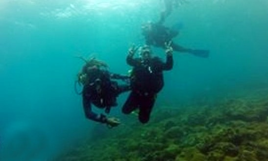 Diving In Cabo Frio