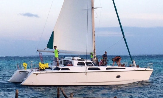 Crusing Catamaran Charters In San Pedro