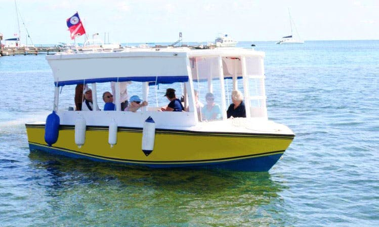 Wildlife Tours in San Pedro, Belize