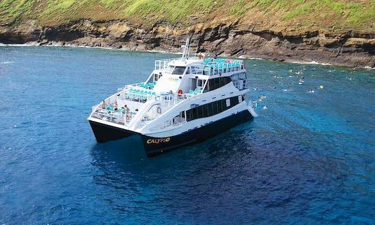 Have An Amazing Snorkeling Experience In Wailuku, Hawaii