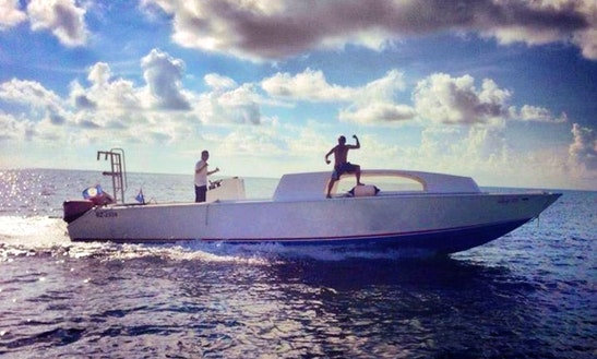 Diving Charters  Snorkeling Tours In Belize