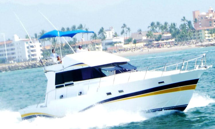 "Fishing Charter 46ft ""Piquis"" Sport Fisherman Yacht In Puerto Vallarta, Mexico"