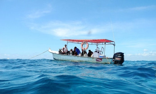 Diving, Snorkeling Trips  Courses In Cancún