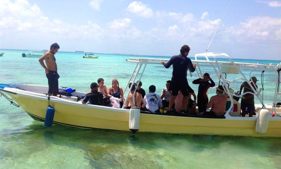 Join Us On The Underwater Adventure In Isla Mujeres, Mexico