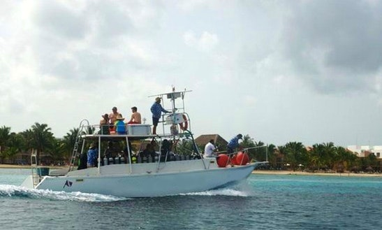 Experience Diving Charter In San Miguel, Mexico