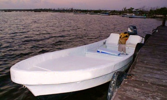 Bass Boat Fishing Charters In San Miguel, Mexico