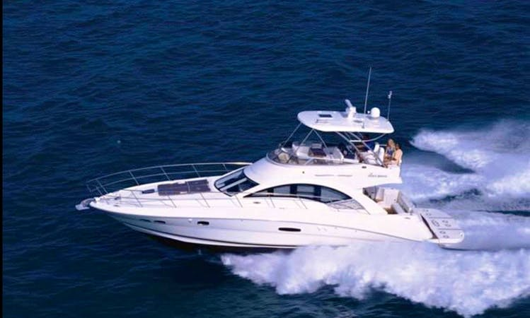 Captained Charter on 50ft Sea Ray flybridge  Motor Yacht in Miami, Florida