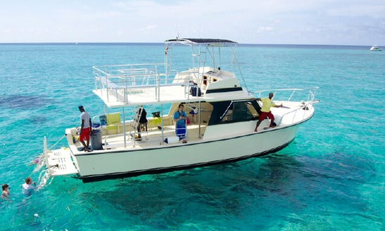 Charter 44' Cayman Bear Cuddy Cabin In West Bay, Cayman Islands