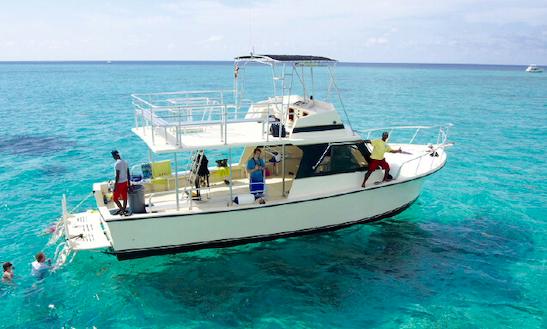 Charter 44' Cayman Bear Cuddy Cabin In West Bay, Cayman Islands