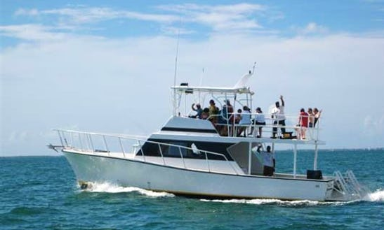 Charter 45' Captain Jimmy Cuddy Cabin In West Bay, Cayman Islands