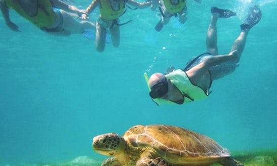 Try Snorkeling In Belize City On Our Tours!