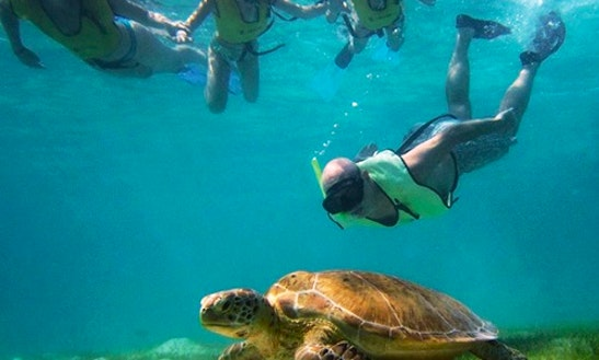 Snorkeling In Belize City