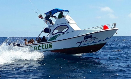 Snorkeling And Fishing Tours From Puerto Ayora, Ecuador