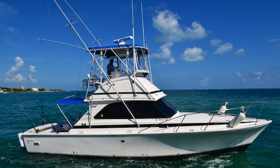 Enjoy Fishing In Cancún, Mexico On 34' Mark Bertram Sport Fisherman