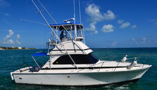 Enjoy Fishing In Cancún, Mexico On 34' Mark Bertram Sport Fisherman