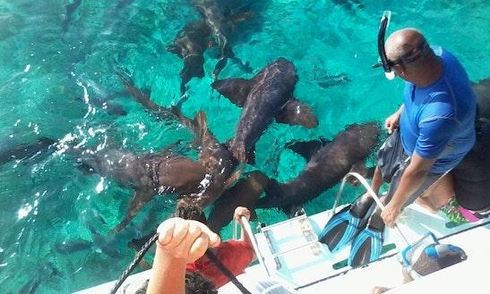 Snorkeling In Belize City