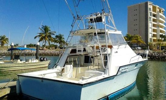 34' Sport Fishing Yacht In Mazatlán