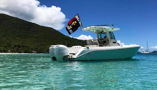 28' Everglades Boat Rental In U.s. Virgin Islands