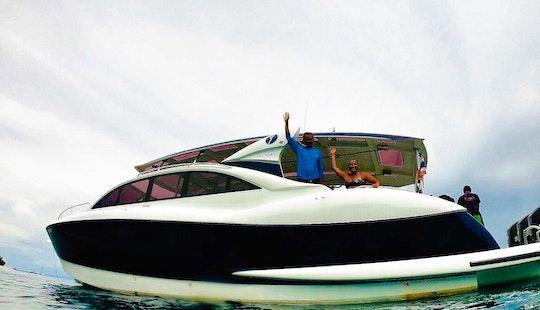 Charter To Dolphin Island, Budda Island, Sunset Beach + Bbq