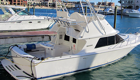 Enjoy Fishing In Punta Cana, Dominican Republic On 29' Blackfin Sport Fisherman