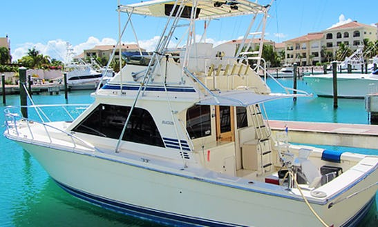 Enjoy Fishing In Punta Cana, Dominican Republic On 38' Blackfin Sport Fisherman