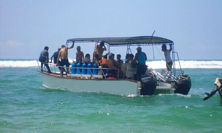 Enjoy Diving Trips and Courses in Hikkaduwa, Sri Lanka