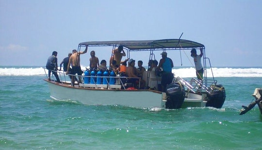Enjoy Diving Trips And Courses In Hikkaduwa, Sri Lanka
