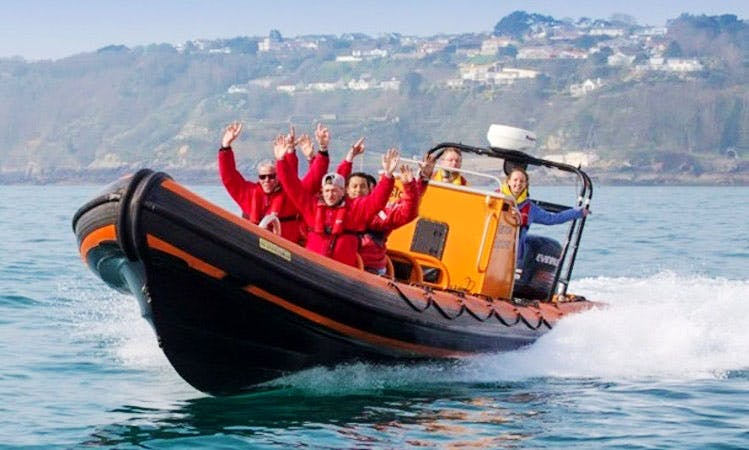 RIB Wildlife Tours in Guernsey, Channel Islands