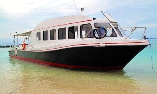 Diving Trip & Padi Courses In Pulau Derawan