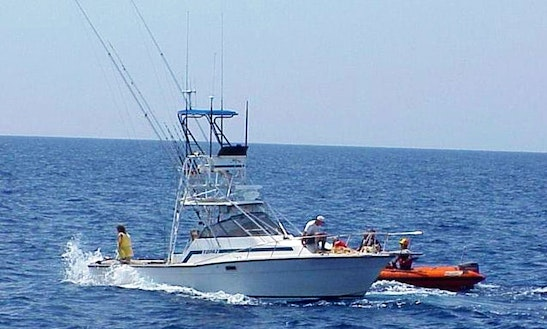 Fishing Charters On 43ft