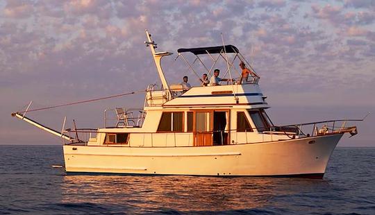 Enjoy Fishing In Limenas Chersonisou, Greece On 36' Hampton Motor Yacht